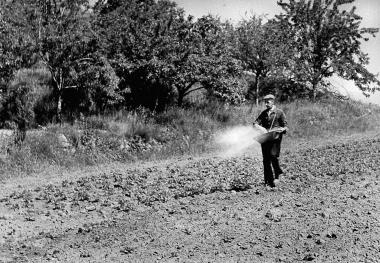 Einzelbauer in den 1950er Jahren - Dieter Oemler