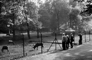 Tierpark Chistianental - Dieter Oemler