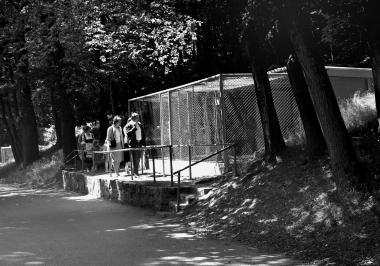 Im Wildpark Christianental - Dieter Oemler