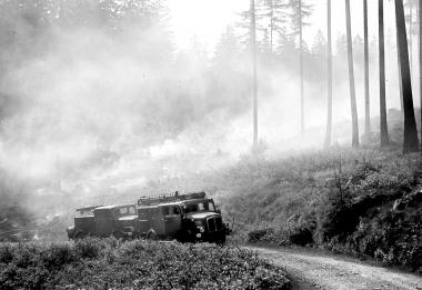 Feuerwehr im Einsatz in der Nähe der Mönchenlagerstätte - Dieter Oemler