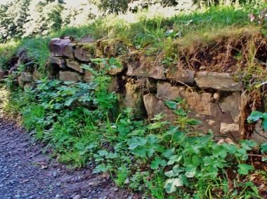 """Reste der Klostermauer """"Himmelpforte"""" - Frank Wiesner"""
