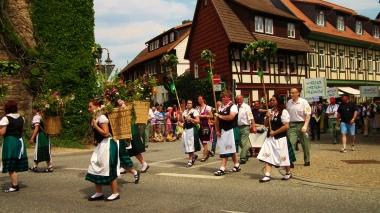 Festumzug bei Sachsen-Anhalt-Tag 2014 © Wolfgang Grothe