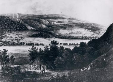Blick auf Wernigerode vom Horstberg im 19. Jahrhundert - Dieter Oemler