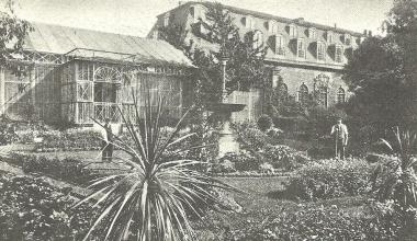 Orangerie 1900 - Dieter Oemler