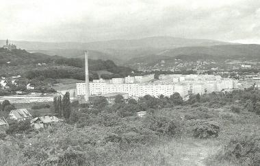 Blick auf Wernigerode - Dieter Oemler