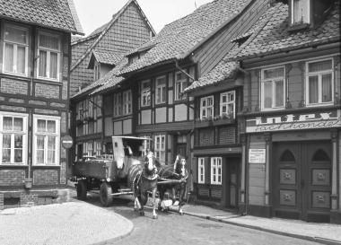 """Das letzte Brauerei-Pferdegespann von """"Hasseröder"""" - Dieter Oemler"""