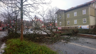 "Orkantief ""Friederike"" wütet am 18. Januar 2018 auch in Wernigerode - Alexander Grothe"