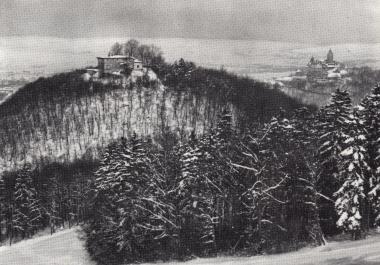 Die Harburg mit Schloss    - Stadtarchiv Wernigerode