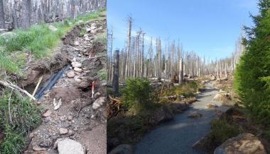 Kabelgrabenweg vor und nach der Sanierung - Friedhart Knolle