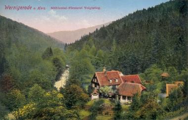 Im Stadtwald am Voigtsstieg - Stadtarchiv Wernigerode