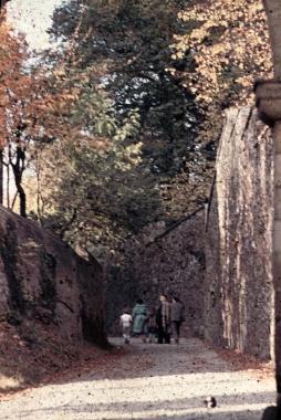Schlossaufgang - Fotothek Harzbücherei