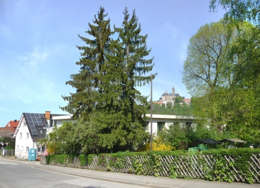 Kindergarten imZwölfmorgental - Dieter Oemler