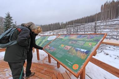 Themeninsel zum Waldwandel an der Brockenstraße ist fertiggestellt - Mandy Gebara